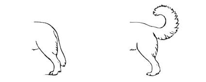 tekening 06
